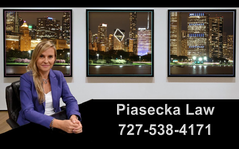 Agnieszka Aga Piasecka Law Prawnik Adwokat Imigracja Emigracja Immigration Attorney Chicago
