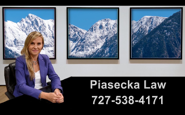 Agnieszka Aga Piasecka Law Prawnik Adwokat Imigracja Emigracja Immigration Attorney Colorado Springs