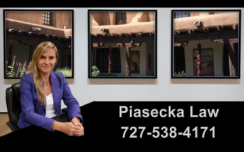 Agnieszka Aga Piasecka Law Prawnik Adwokat Imigracja Emigracja Immigration Attorney Santa Fe NM